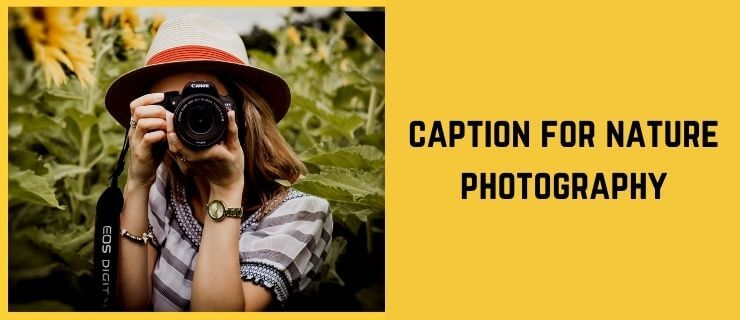 caption for nature photography